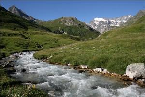 Bach Alpen 08 IMG_2399 kl